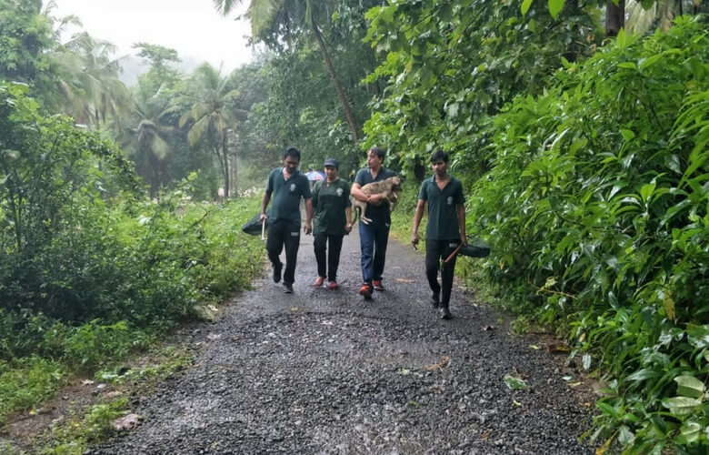 kerala floods pets